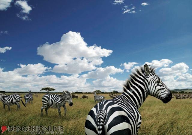 【PS3】强强联手 SCE与国家地理共创虚拟非洲