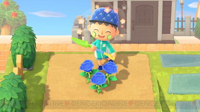 島暮らし6カ月目でやっと青バラが咲きました! 【あつ森日記#136】