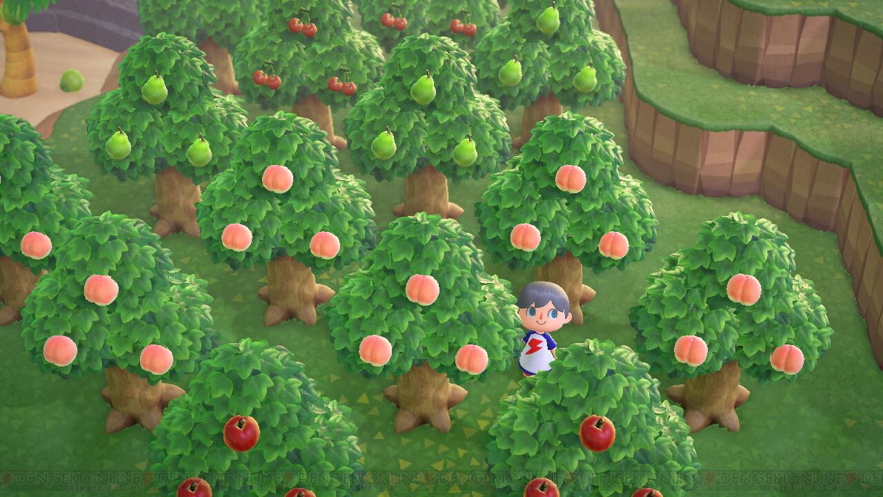 あつまれ どうぶつ の 森 果樹 園
