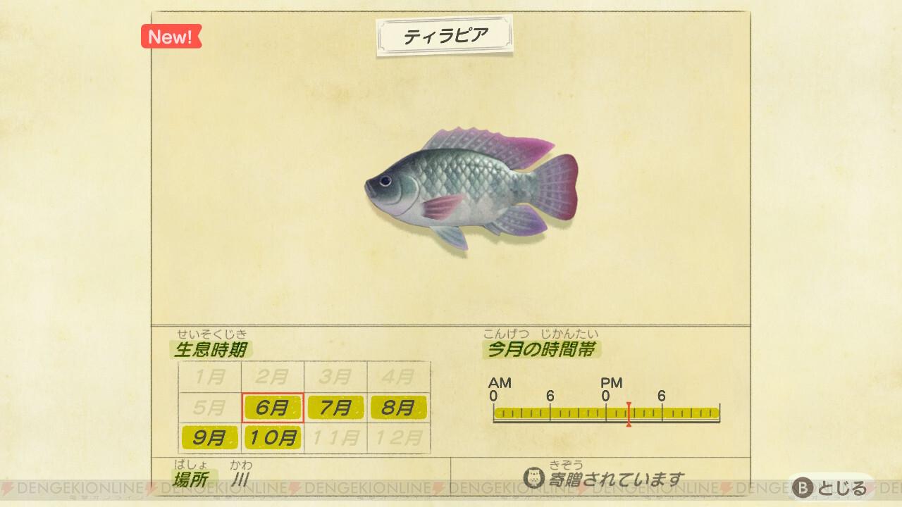 あつ 森 5 月 に 釣れる 魚