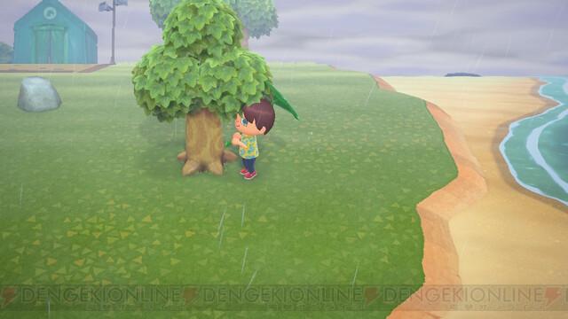 木 どうぶつ お金 の 森 の