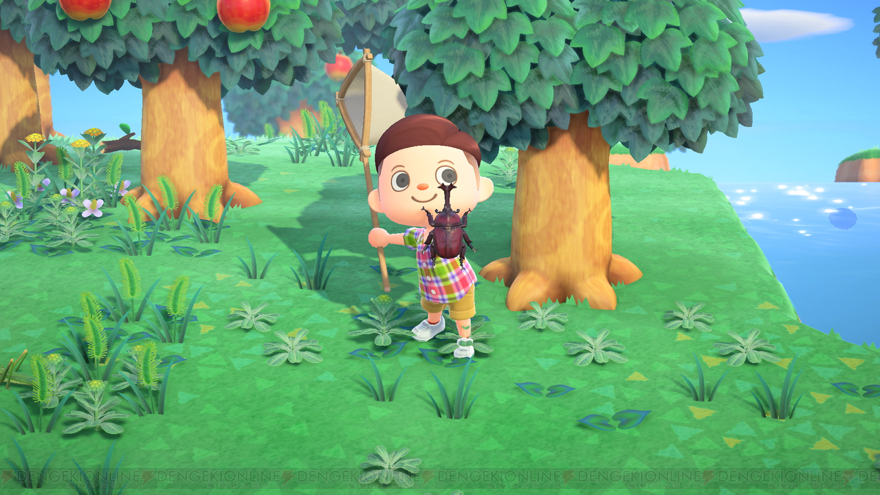 あつまれどうぶつの森 楽しみ