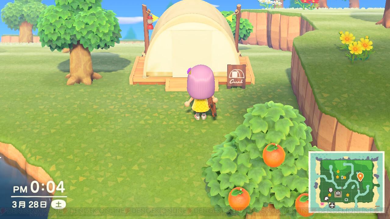 あつまれどうぶつの森 キャンプサイト 拒否