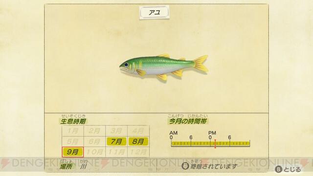 値段 あつ 森 クマノミ 【あつ森】魚図鑑一覧|値段・魚影・時間【あつまれどうぶつの森】